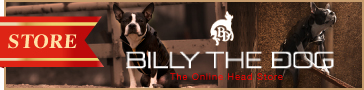 Billy the Dog